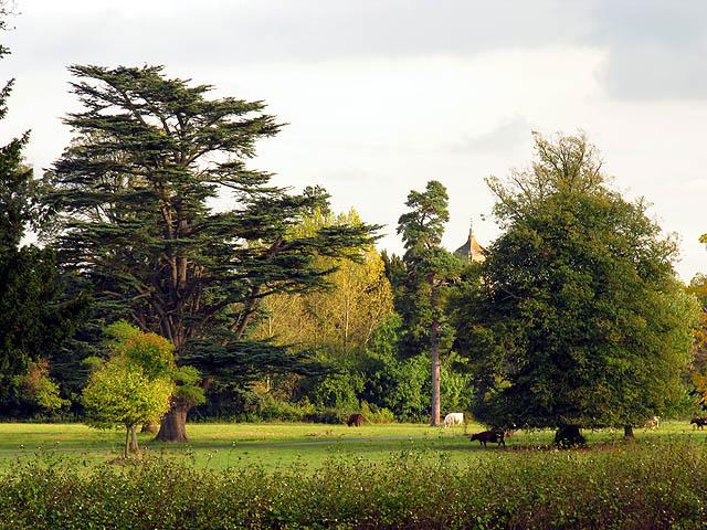 Westonbirt Estate