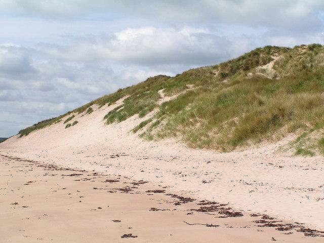 Beadnell Dunes