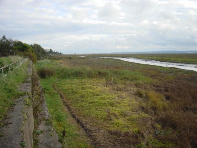 Saltmarsh on the river Dee