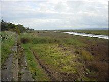 SJ2580 : Saltmarsh on the river Dee by Sue Adair