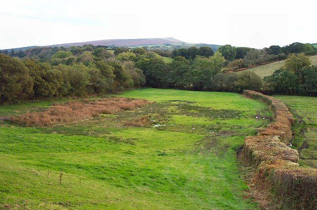 Fields near Batworthy - Devon