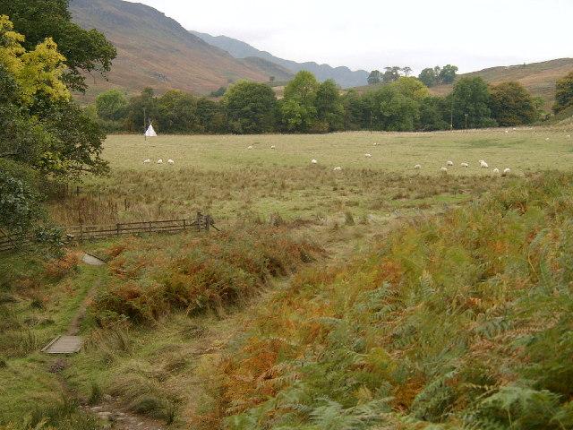Field by Lednock circular walk