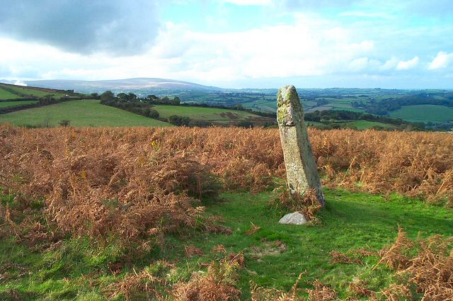 Nattadon cross - near Chagford
