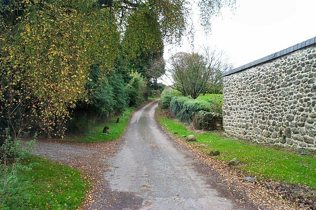 The road outside Cranbrook Farm - Chagford, Devon