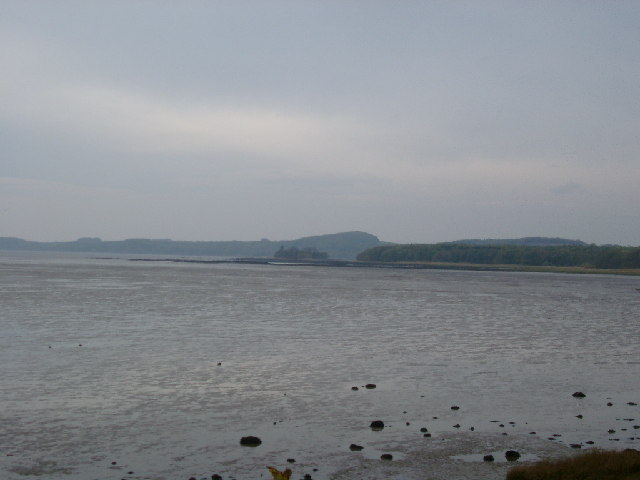 Mudflats towards Paul Jones Point, St Mary's Isle, Kirkcudbright