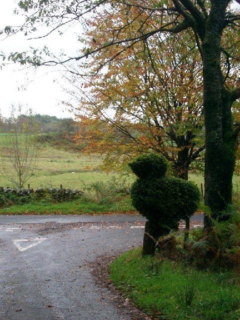 Topiary near Glenkiln Reservoir