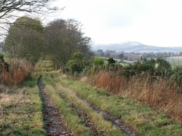 Farm track by Logie