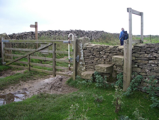 Gate and stone stile