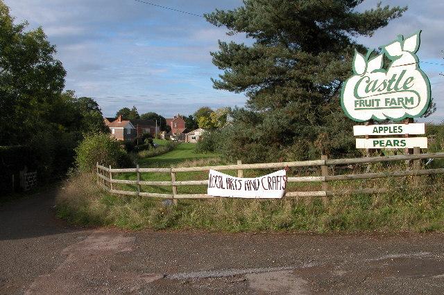 Castle Fruit Farm, Castle Tump, Dymock