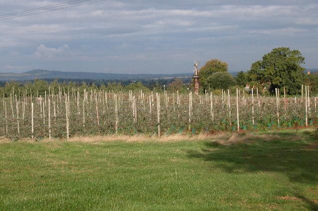 Castle Farm, Dymock