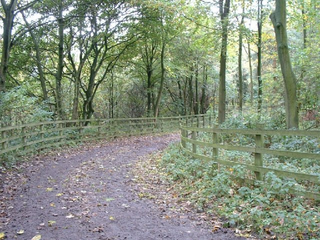 Pathway to Prior's Wood Hall