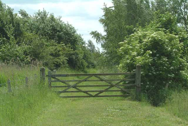 Gated path in Fosdyke nature reserve