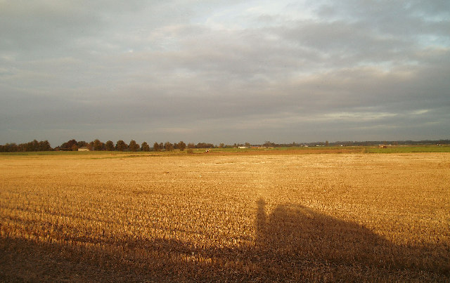 West Head; evening sun of a field of stubble.