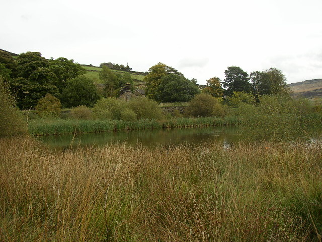 Pond at lower end of disused reservoir, Tunnel End, Marsden