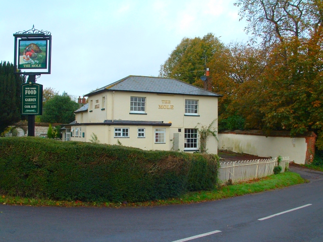 The Mole Inn, Monk Sherborne, Hampshire