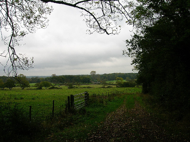 Farmland, near South Chailey