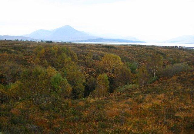 Woodland, Abhainn Lusa.