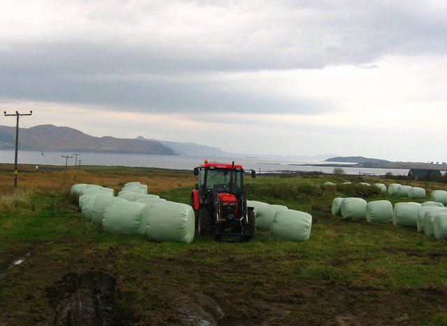 Tractor and silage bales, Breakish