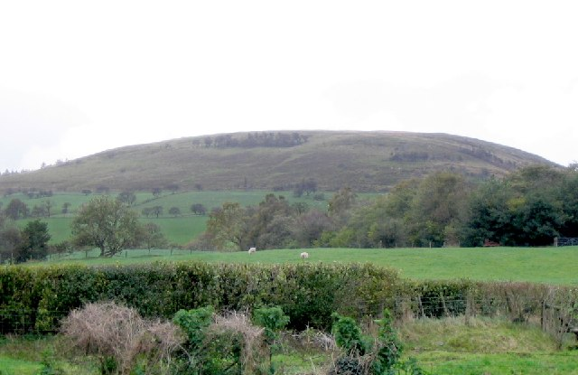 West slope of Fan Frynych