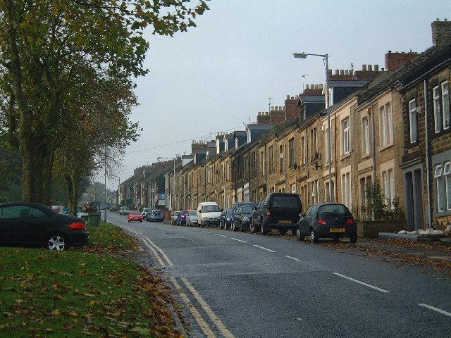 Felling - Coldwell Lane