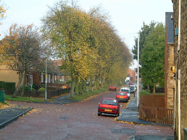 Victoria Avenue, Felling