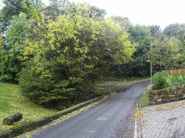 Road near Falhouse Green
