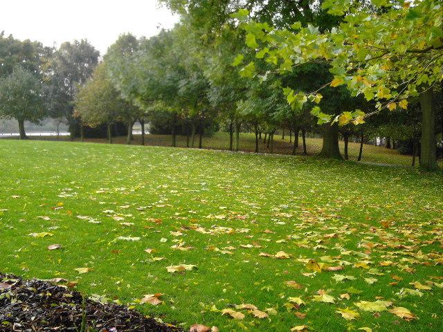 Saltwell Park