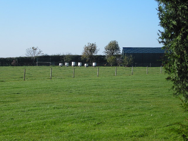 Bee Hives at Wold Farm