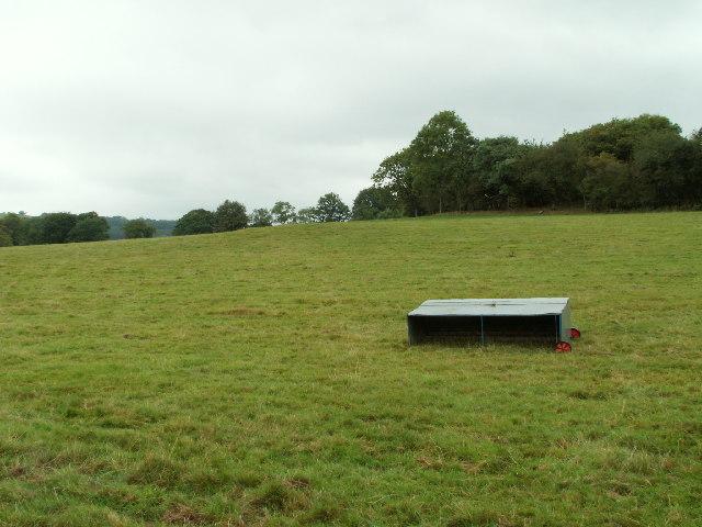 Pastureland near Glan Rheidol