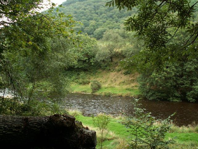 Afon Rheidol