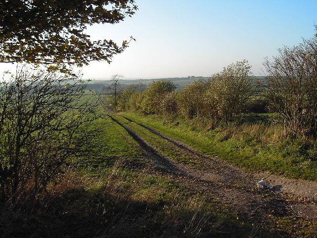Fields opposite Whitehall Farm