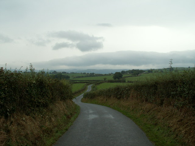 Country road, nr Llanfihangel y Creuddyn