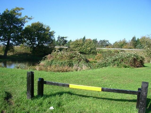 Common land at Cobham