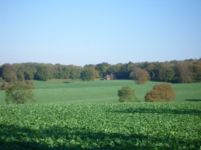 Fullers Farm and Hook Wood