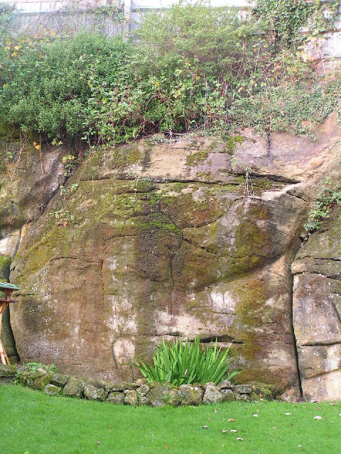 Tunbridge Wells sandstone Cliff