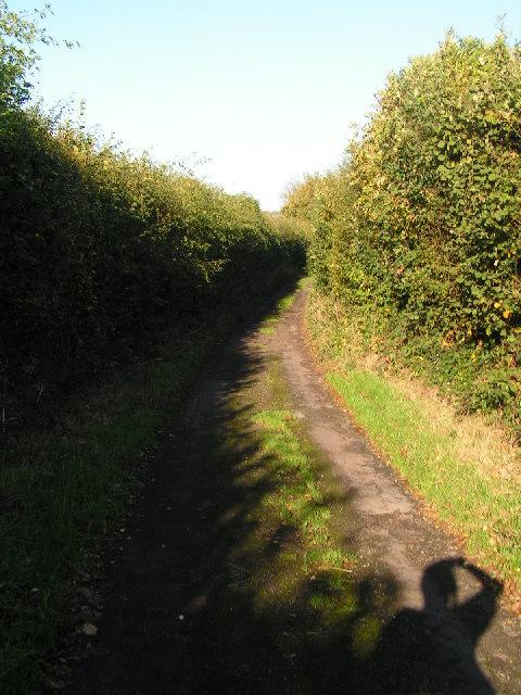 Narrow Kentish lane, near Horsmonden