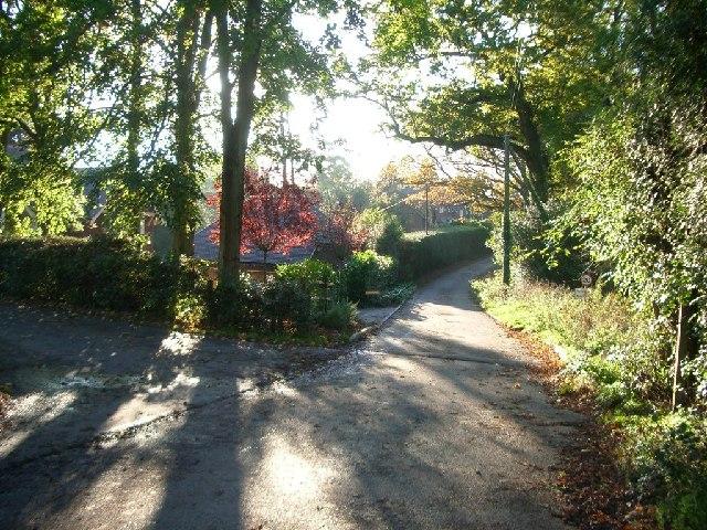 Wykehurst Lane, Ewhurst