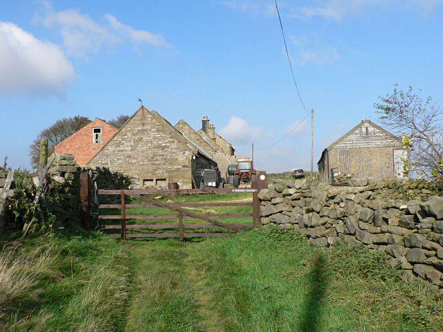 Hazel Head farm