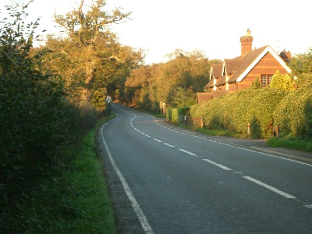 Stane Street, just north of Ockley