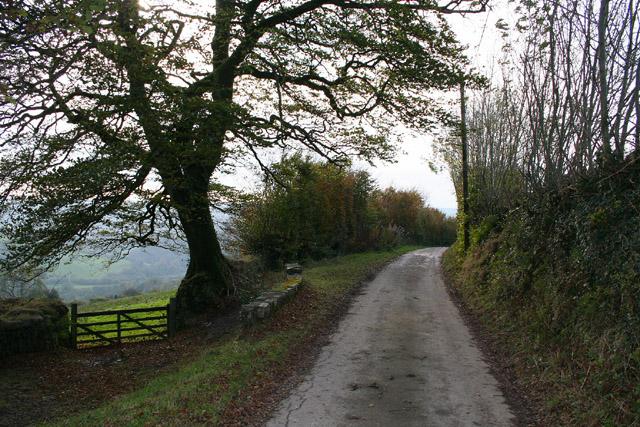 Exton: Stone Lane