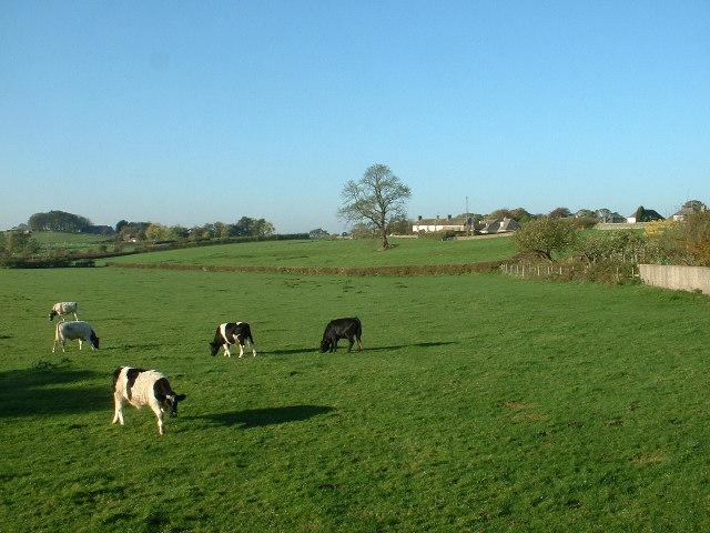 Farmland near Slyne
