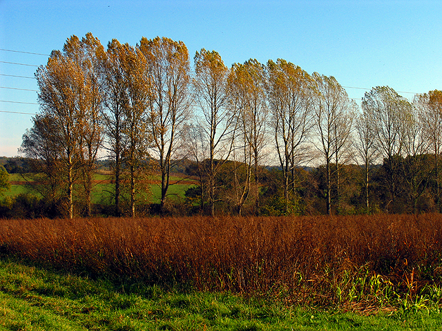 Autumn Fields near Frilsham