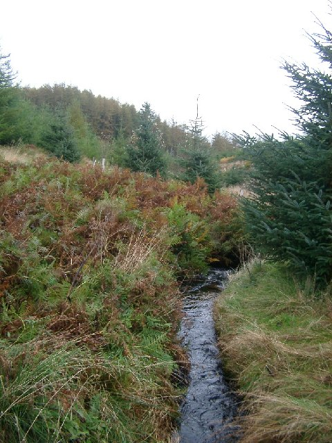 Fuffock Burn, Glencap Forest