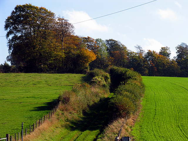 Byway at Manor Farm near Chaddleworth