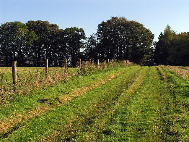 Byway linking Manor Farm and Chaddleworth Church