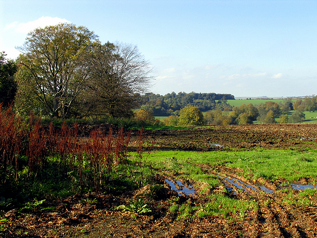 Farmland near Woolley Home Farm