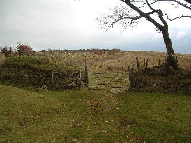 Saddle Gate and Saddle Stone