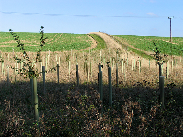 Farmland in the Leckhampstead area