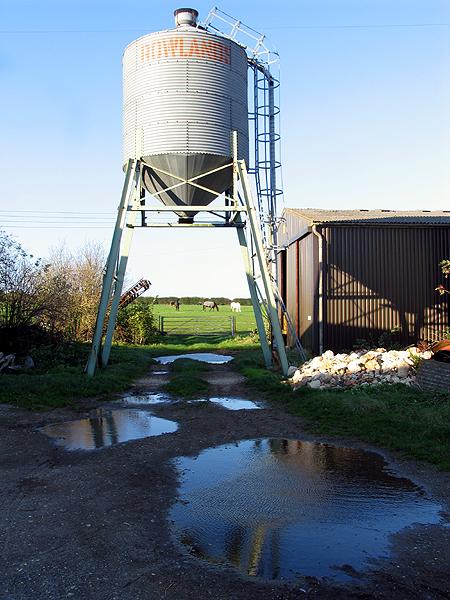 Farm near Winterbourne