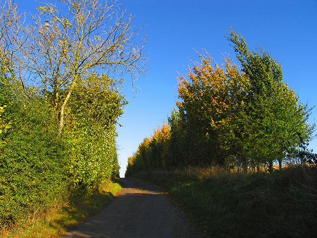 Steep Gradient near Brightwalton Holt